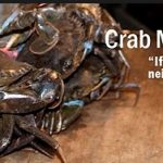 "An image of crabs in a bucket, with the text ""Crab mentality: if I can't have it, neither can you"""
